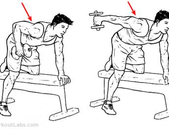 triceps calıstırma